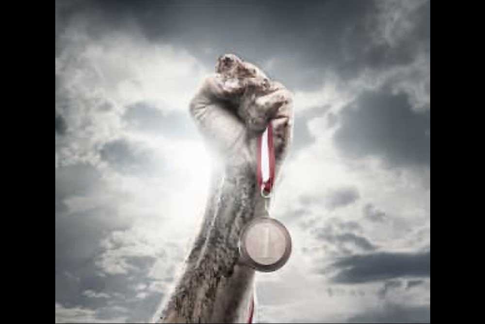 Pride Mixed Martial Arts - Winning 24/7